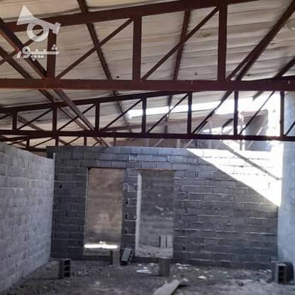 فروش زمین 900 متری با سوله پروانه بهره برداری در گروه خرید و فروش املاک در مازندران در شیپور-عکس2