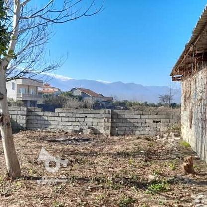 فروش زمین 900 متری با سوله پروانه بهره برداری در گروه خرید و فروش املاک در مازندران در شیپور-عکس8
