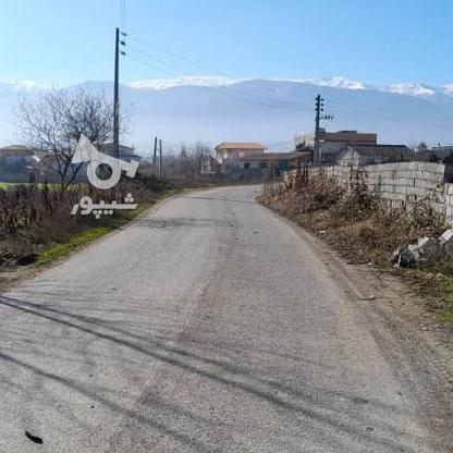 فروش زمین 900 متری با سوله پروانه بهره برداری در گروه خرید و فروش املاک در مازندران در شیپور-عکس3