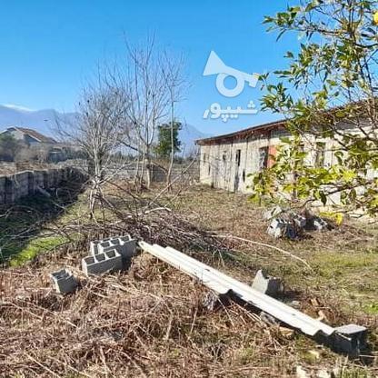 فروش زمین 900 متری با سوله پروانه بهره برداری در گروه خرید و فروش املاک در مازندران در شیپور-عکس4