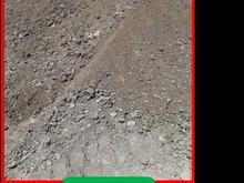 کود مرغی خشک و خالص در شیپور