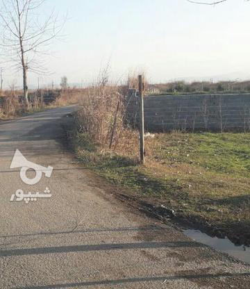 فروش زمین مسکونی 700 متر در آمل در گروه خرید و فروش املاک در مازندران در شیپور-عکس1