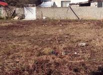 فروش زمین مسکونی 163 متر در آستانه اشرفیه در شیپور-عکس کوچک