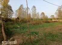 زمین کشاورزی 1500 متر در لنگرود در شیپور-عکس کوچک
