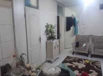 فروش آپارتمان 39 متر در هفت چنار در شیپور-عکس کوچک