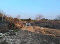 فروش زمین مسکونی 251 متر تفکیکی انتظامی در شیپور-عکس کوچک