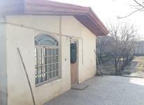فروش باغ 1000 متری در شهریار در شیپور-عکس کوچک
