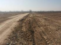 زمین کشاورزی جاده شهریار  در شیپور-عکس کوچک