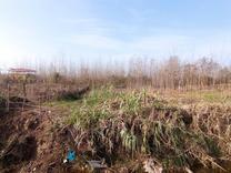 400 متر زمین باغی بر جاده  در شیپور
