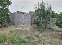 زمین مسکونی با امتیاز آب و برق  روستا دوک در شیپور-عکس کوچک