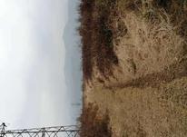 زمین کشاورزی 4500 متر در املش در شیپور-عکس کوچک