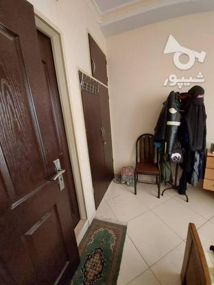 53متر/فول امکانات/ کمیل ,هرمزان/غرق نور  در گروه خرید و فروش املاک در تهران در شیپور-عکس3