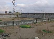۵۰۰متر باغچه...چهاردیواری شده در شیپور-عکس کوچک