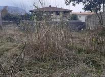 فروش زمین مسکونی 330 متر در لنگرود کومله روبرو پمپ بنزین در شیپور-عکس کوچک