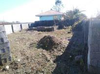 فروش زمین مسکونی 222 متر در صومعه سرا در شیپور-عکس کوچک