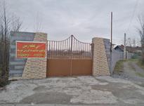 فروش زمین مسکونی در کمربندی لاهیجان در شیپور-عکس کوچک