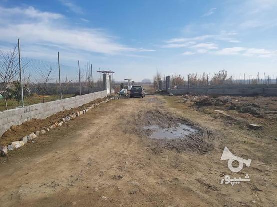 فروش زمین کشاورزی 327 متر در بابل در گروه خرید و فروش املاک در مازندران در شیپور-عکس1