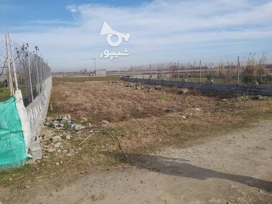 فروش زمین کشاورزی 327 متر در بابل در گروه خرید و فروش املاک در مازندران در شیپور-عکس2