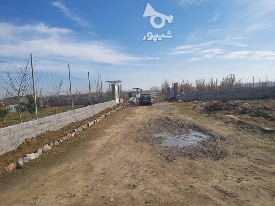 فروش زمین کشاورزی 327 متر در بابل در گروه خرید و فروش املاک در مازندران در شیپور-عکس4