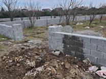 زمین با کاربری باغات 600 متر در تنکابن در شیپور