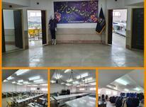 استخدام نیروی کار خانم  در شیپور-عکس کوچک