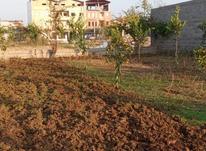 باغ کاربری مسکونی پلاک دوم کمربندی 285متر در شیپور-عکس کوچک