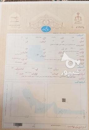 فروش زمین تجاری مسکونی 151 متر در پاکدشت در گروه خرید و فروش املاک در تهران در شیپور-عکس2