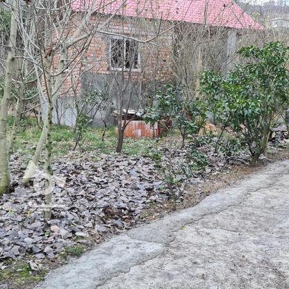 1000متر زمین در وارد محله در گروه خرید و فروش املاک در مازندران در شیپور-عکس2