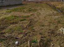 ۳۷۷ متر زمین مسکونی در اشمان کوماچال در شیپور-عکس کوچک