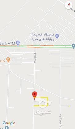 زمین ماهدشت خیابان یاس در گروه خرید و فروش املاک در البرز در شیپور-عکس1