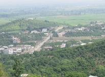 زمین مسکونی 300 متری در مرزون آباد در شیپور-عکس کوچک