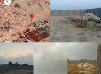 زمین 1000 متری گورک در شیپور-عکس کوچک