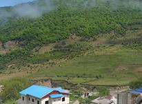 زمین مسکونی ۱۲۰۰۰ متری داخل بافت در شیپور-عکس کوچک