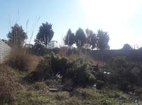 فروش زمین 440 متری هراز-قبل قائم در شیپور-عکس کوچک