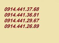 68 37 441 0914 در شیپور-عکس کوچک