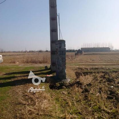 فروش زمین کشاورزی 7000 متر در فریدونکنار در گروه خرید و فروش املاک در مازندران در شیپور-عکس2