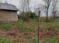 زمین مسکونی 275 متر در گلرودبار در شیپور-عکس کوچک
