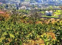 فروش زمین 350 متر با چشم انداز شهر ساری و رود تجن در شیپور-عکس کوچک