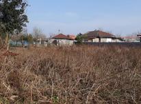 فروش زمین مسکونی 935 متر در لشت نشا در شیپور-عکس کوچک