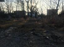 فروش زمین مسکونی 460 متر در سلمان شهر در شیپور-عکس کوچک