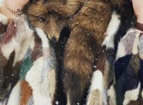 کت پوست و شالگردن روباه در شیپور-عکس کوچک