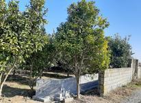 زمین باغی310 متری در شیپور-عکس کوچک