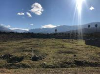 فروش زمین 2300 متر در نشتارود در شیپور-عکس کوچک