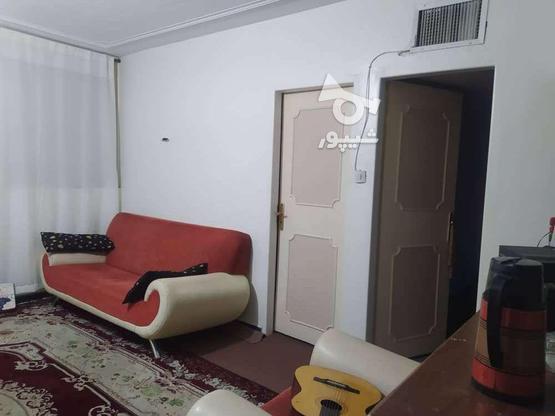 فروش آپارتمان 64 متر در مارلیک * دیپلمات * در گروه خرید و فروش املاک در البرز در شیپور-عکس6