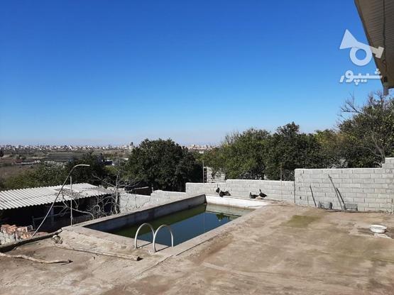 زمین مسکونی تجاری 550 متر  در گروه خرید و فروش املاک در مازندران در شیپور-عکس6