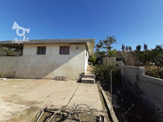 زمین مسکونی تجاری 550 متر  در گروه خرید و فروش املاک در مازندران در شیپور-عکس2