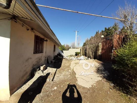 زمین مسکونی تجاری 550 متر  در گروه خرید و فروش املاک در مازندران در شیپور-عکس5