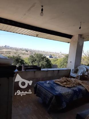 زمین مسکونی تجاری 550 متر  در گروه خرید و فروش املاک در مازندران در شیپور-عکس3