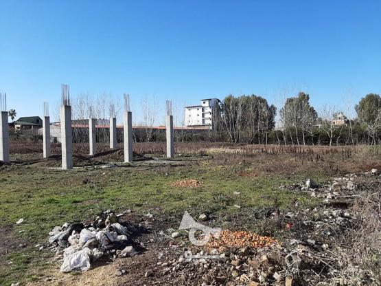 فروش زمین تجاری و مسکونی 180جنب هزارنقش  در گروه خرید و فروش املاک در مازندران در شیپور-عکس2
