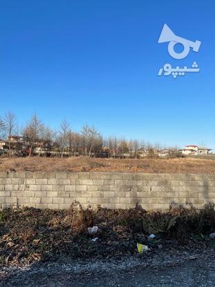 فروش زمین مسکونی 5000 متر در متل قو در گروه خرید و فروش املاک در مازندران در شیپور-عکس1